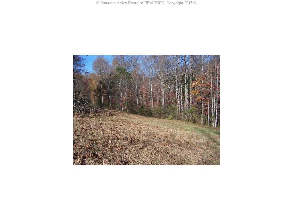 Lot 24 Cottonwood Circle, Elkview, West Virginia 25071, ,Land,For Sale,Cottonwood,154506