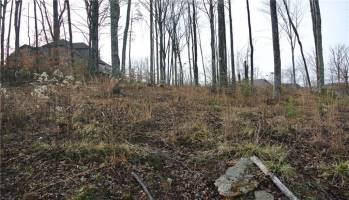 Lot 27 Double Eagle, Charleston, West Virginia 25314, ,Land,For Sale,Double Eagle,245230