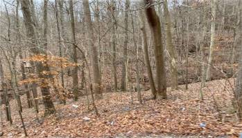 1 Smith Creek Road, South Charleston, West Virginia 25303, ,Land,For Sale,Smith Creek,245655