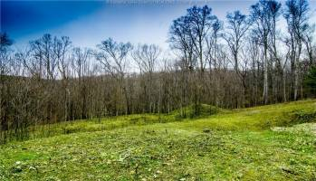 53 Lively Road, South Charleston, West Virginia 25309, ,Land,For Sale,Lively,246107