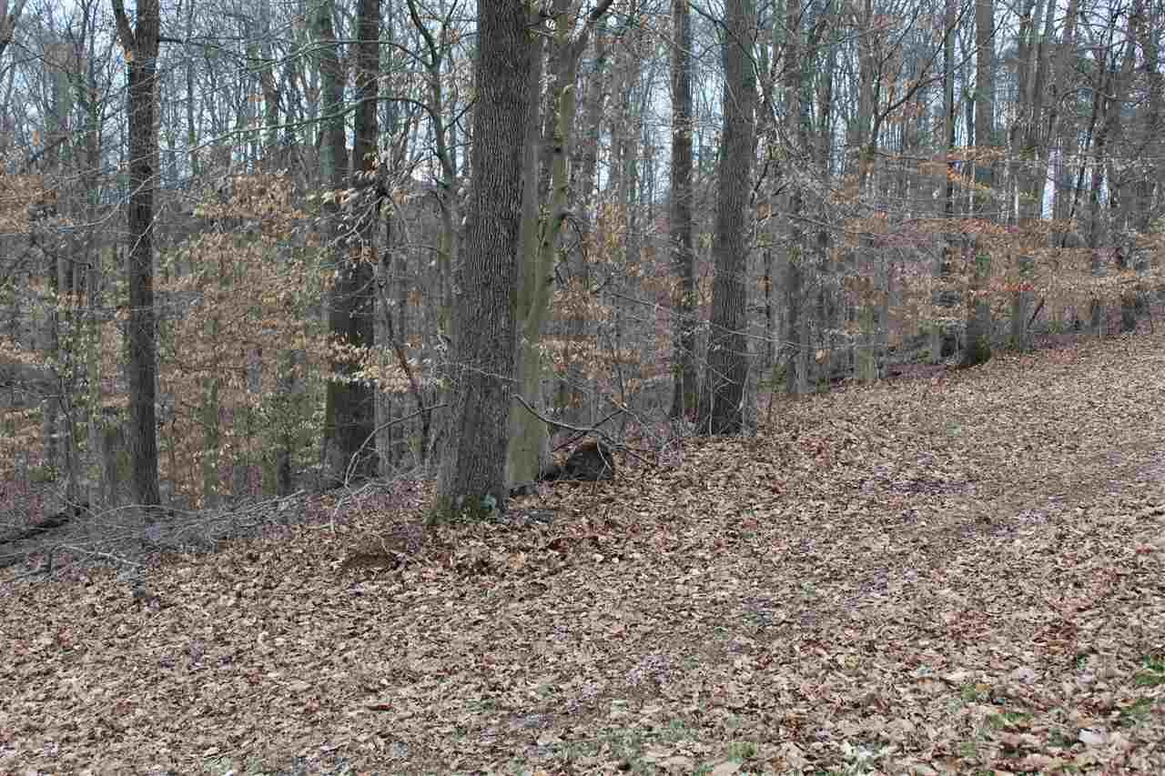 38 Summit Pointe, Eleanor, West Virginia 25070, ,Residential Lot,For Sale,Summit Pointe,164187